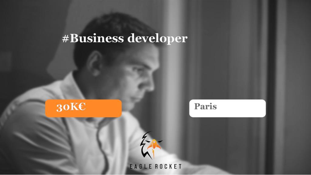 Annonce business developer
